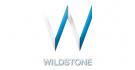 Wildstone Logo