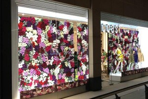 LED window display