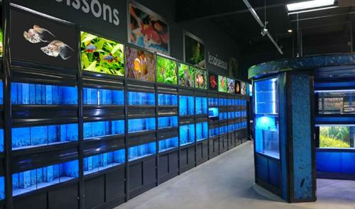 Illuminated pet enclosures for Casco Pet